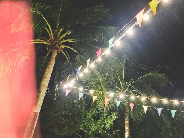 Asadong beach bazaar_palm tree with string lights